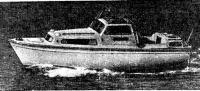 Албин-25 на воде