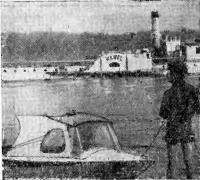 «Дельфин» Яна Томашевского на Висле