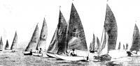 Флотилия из швертботов «Миррор Динги»