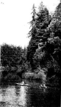 Фото байдарки на фоне живописного пейзажа