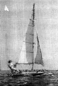 Фото катамарана под парусами