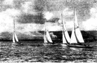 Фото яхт-участниц регаты