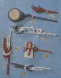 Фотография морских узлов