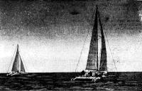 Крейсерские катамараны «Гауя» и «Каупо» в Рижском заливе