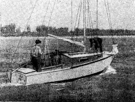 Крейсерский швертбот класса Т2