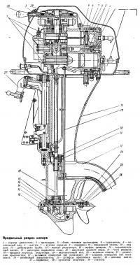 Продольный разрез мотора