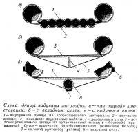 Схема днища надувных мотолодок