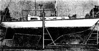«Сторми Петрел» — пластмассовый «однотонник» конструкции О. Стефенса