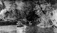 Узкое место реки