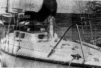В гавани при верфи Шелина: крейсерская яхта из стеклопластика