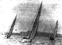 Яхты выходят на старт в Невскую губу