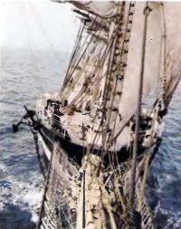 Четырехмачтовый барк «Крузенштерн» — самое крупное судно регаты