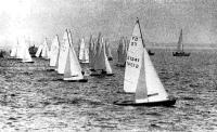 Флотилия из спортивных яхт