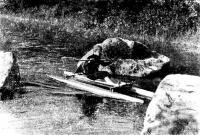 Фото катамарана «Лебедь» на воде