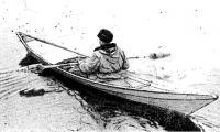 Фото ветки-долбленки на воде