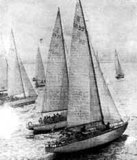 Фото яхт-участниц соревнований