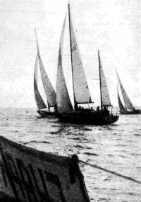 Фото яхт участников гонки