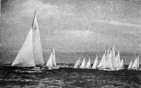 Фото яхт во время регаты