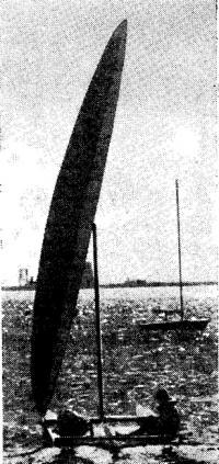 Катамаран «Теквинг» с жестким парусом-крылом