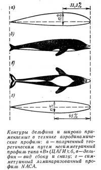 Контуры дельфина и широко применяемые в технике аэродинамические профили