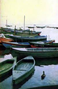 Лодки иа Финском заливе (г. Кронштадт)