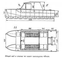 Общий вид и сечение по каюте катамарана «Янга»