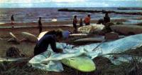 Подготовка виндсерфингов на берегу