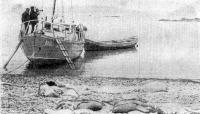 Полуостров Канин, у становища Тарханове