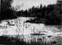 Пороги на реке Суме