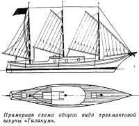 Примерная схема общего вида трехмачтовой шхуны «Тиликум»