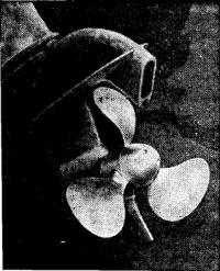 Рис. 10. Винт Р. П. Соловьева установленный на моторе