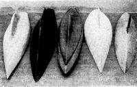 Рис, 1. Некоторые из моделей, испытанных в НКИ
