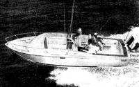 Рыболовный вариант катера — «Торнамент Фишермен»
