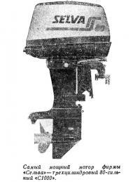 Самый мощный мотор фирмы «Сельва» — трехцилиндровый 80-сильный «С1000»