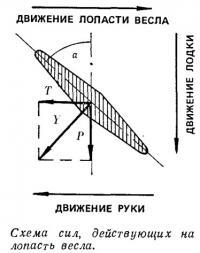 Схема сил, действующих на лопасть весла