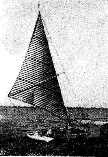 Тримаран «Стриж» под парусами