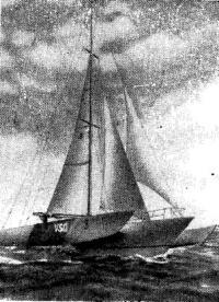 Тримаран «ВСД» — победитель гонки