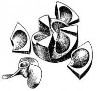 Устройство формы для отливки винтов