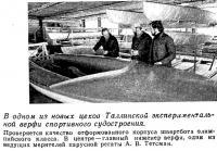 В одном из новых цехов Таллинской экспериментальной верфи спортивного судостроения