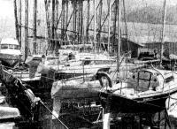 В яхт-клубе «Шукуцу-Марина». Все суда стоят на берегу