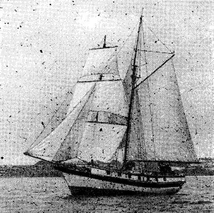 Яхта «Витязь» под парусами