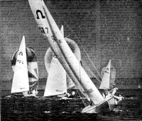Яхты класса «Солинг»