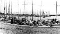 Яхты — участники соревнований стали первыми гостями новой олимпийской гавани в Таллине