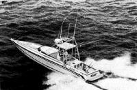 Фото катера «Темпест-44»