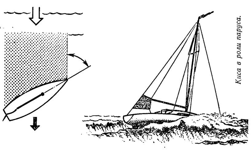 Киса в роли паруса