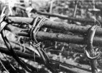 Концы промежуточных шпангоутов заплетаются вокруг привального бруса