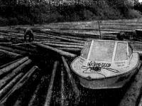 Молевой сплав леса запомнился нам даже больше, чем пороги Онеги