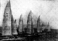На дистанции катамараны. На переднем плане под №21 яхта чемпиона В. Потапова
