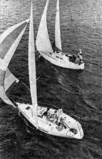 Вид сверху на яхты