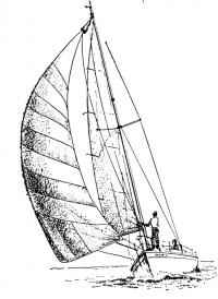 Яхта под спанкером на курсе бик-штаг